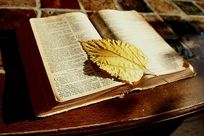 bibel herbst
