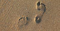 footprint 2353510 1920